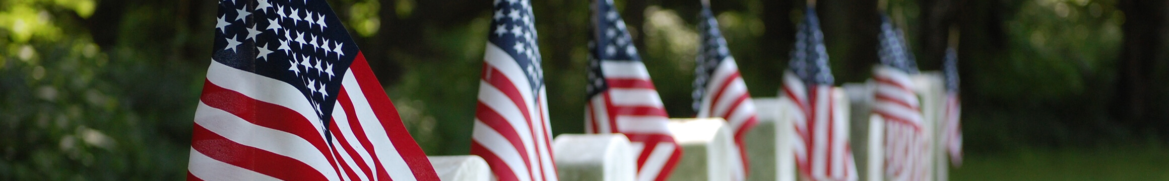 AMerican Veteran 10