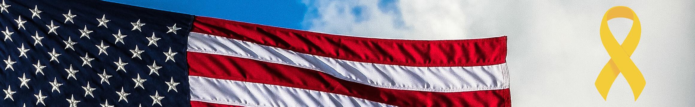American Veteran 03