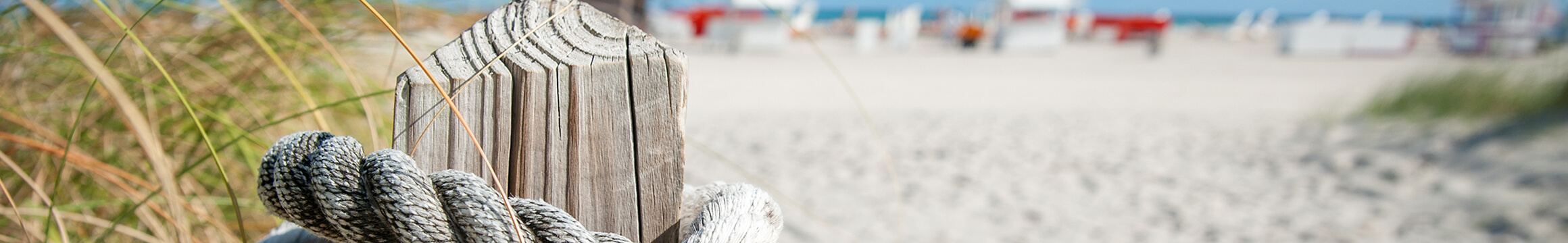 Ocean Beach 06