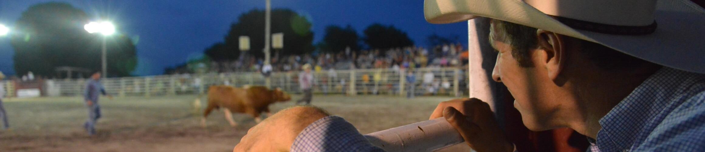 Cowboy 466551