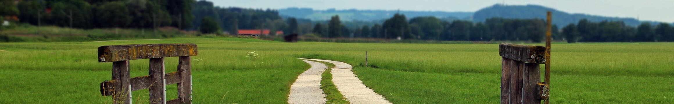 Rural 04