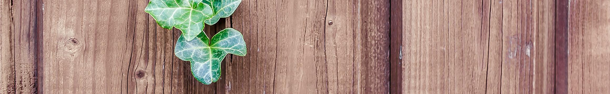 Wood Rustic 07