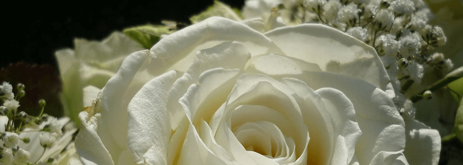 All Obituaries | Jones & West Funeral Home | Phelps KY
