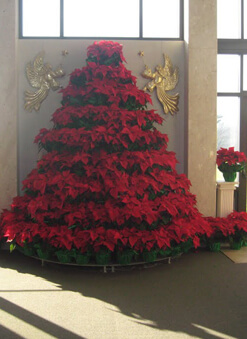 Poinsettia Tree Program | Scenic Memorial Gardens Cemetery