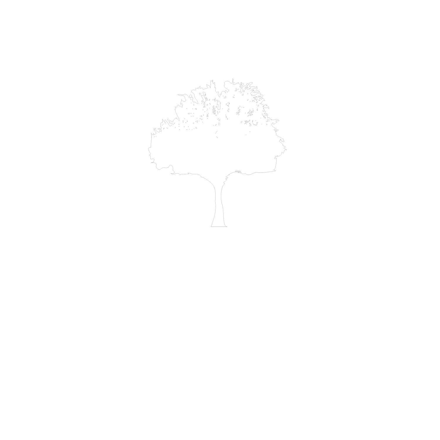 Vilonia Funeral Home & Cremation Logo