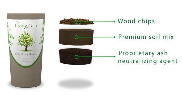 Turn Cremation Ashes Into A Tree