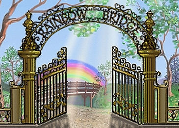 Rainbow Bridge Pet Loss Grief Center
