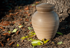 Burying Cremation Ashes - Biodegradable Urn