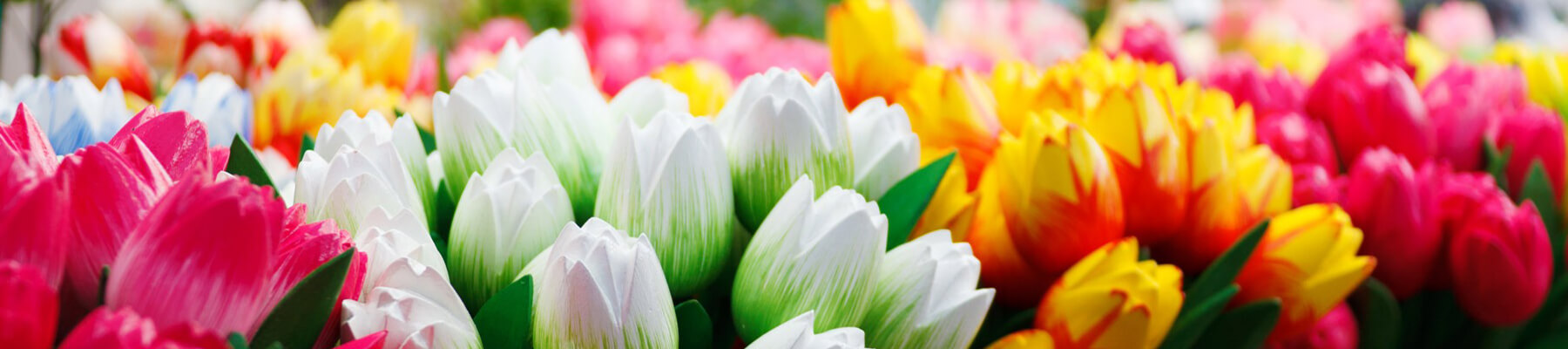 All Obituaries | Keck-Coleman Funeral Home | St  Johns MI
