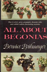 All About Begonias