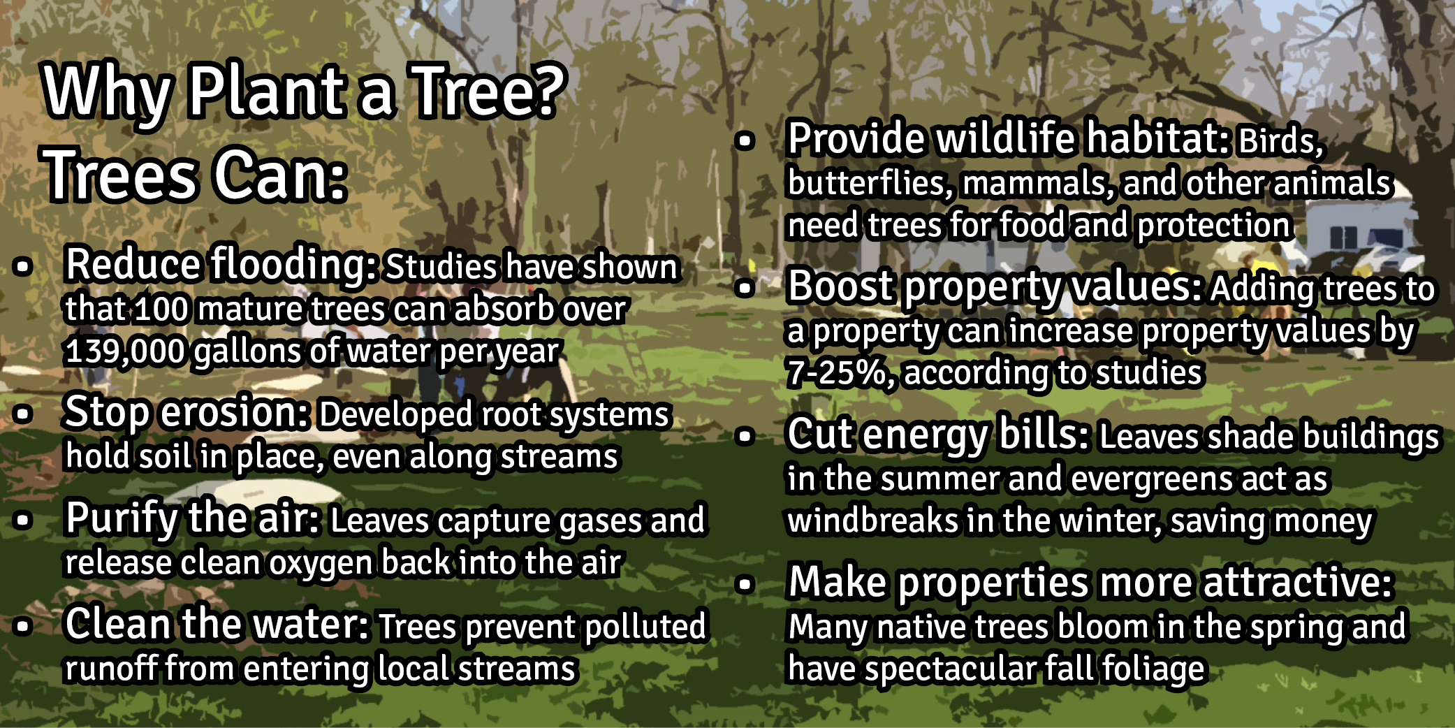 Why Plant a Tree
