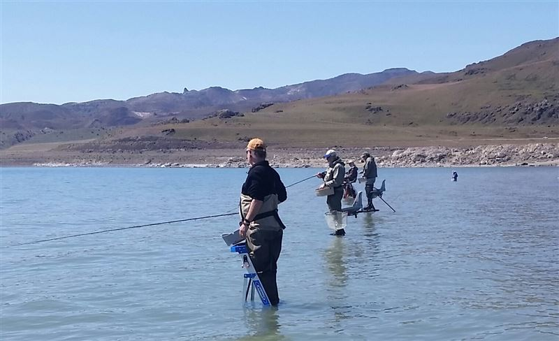 We had a great outing to Pyramid Lake 4-21. Everyone caught fish and some caught a lot of fish.... As with any of our club trips, there was plenty of help for those new or experienced.