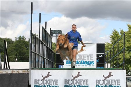 Photos from Buckeye DockDogs event in Mansfield, Ohio, September, 2012