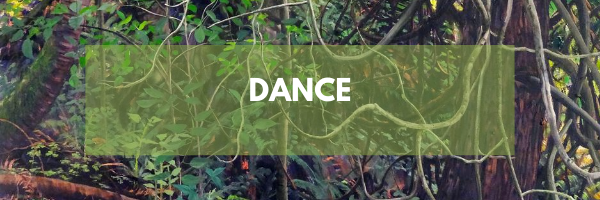 2020 website - dance
