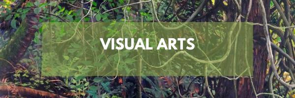 2020 website - visual art