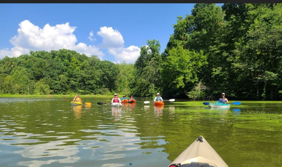 Afternoon day paddle at Meeman-Shelby Forest State Park