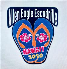 Hawaii 2020 Patch - click to view details