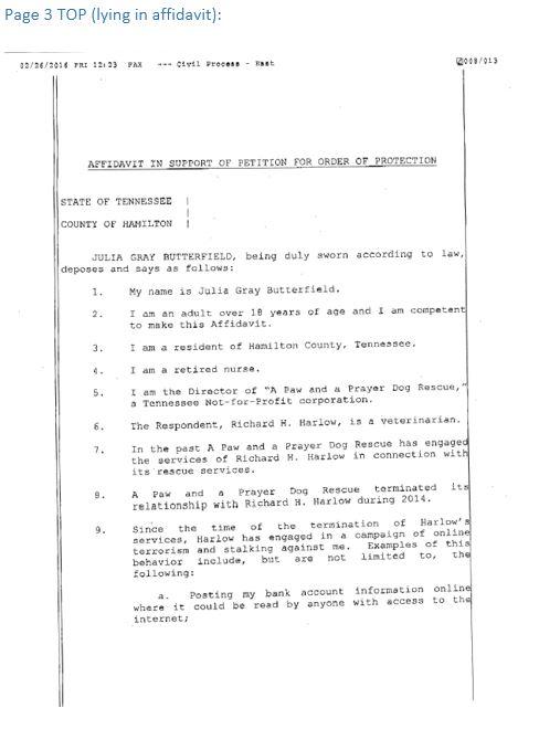 Temporary Order Of Protection P5 Lies Affidavit Agape Kosmos