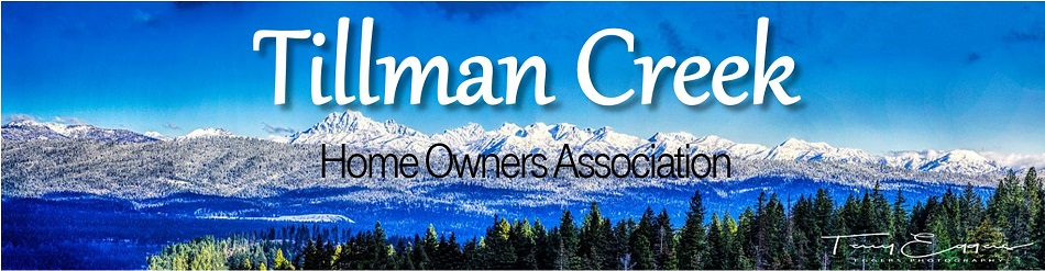 Committees - Tillman Creek Homeowners Association