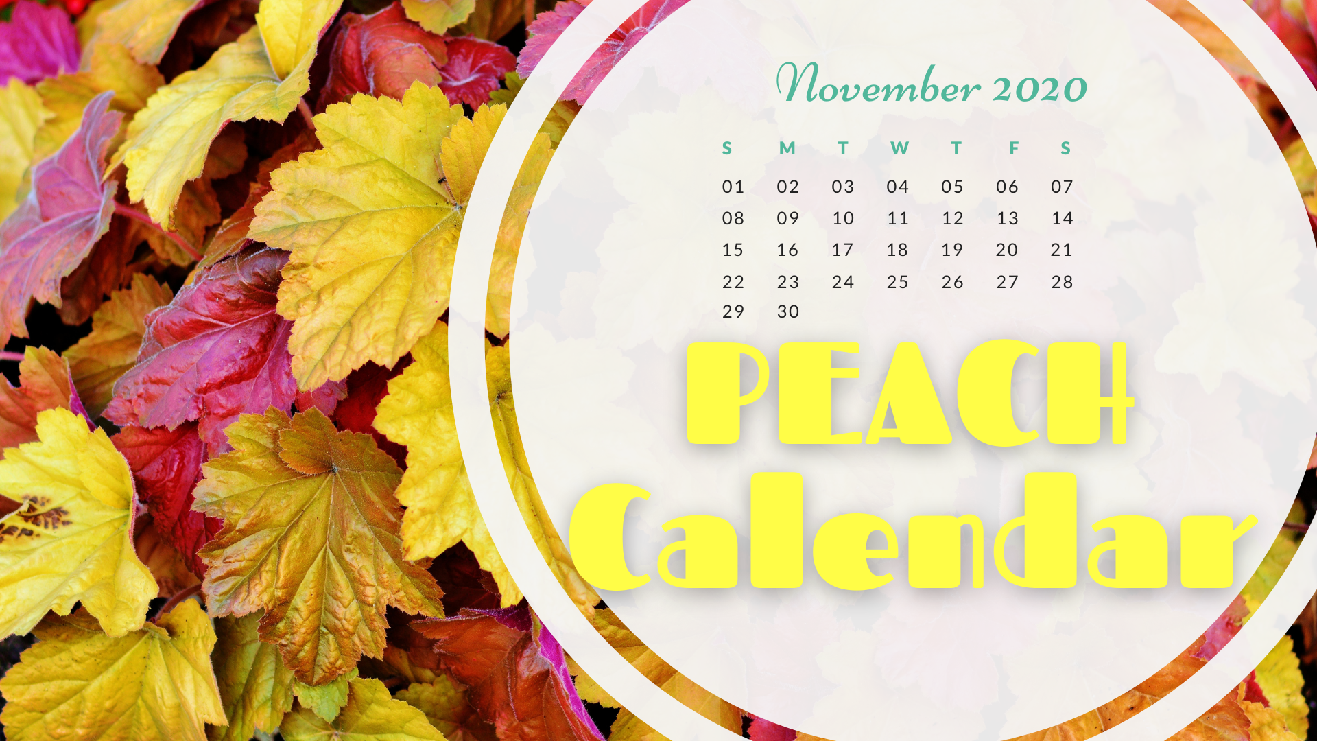 Nov_Calendar_Graphic