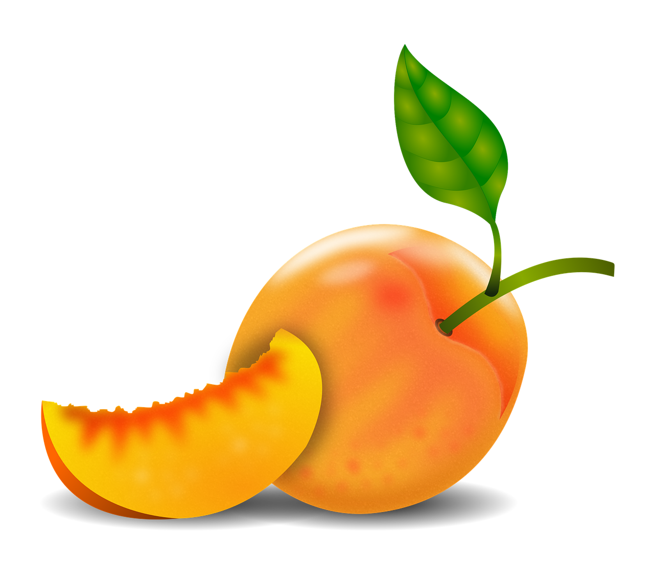 peach_transparent_bg