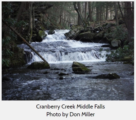 Cranberry Creek Middle Falls - Photo by Don Miller (PHLT)