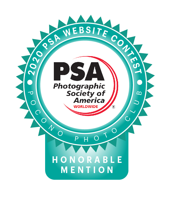 2020 PSA Website Honorable Mention