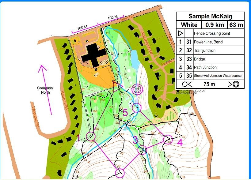 Orienteering Map Sample