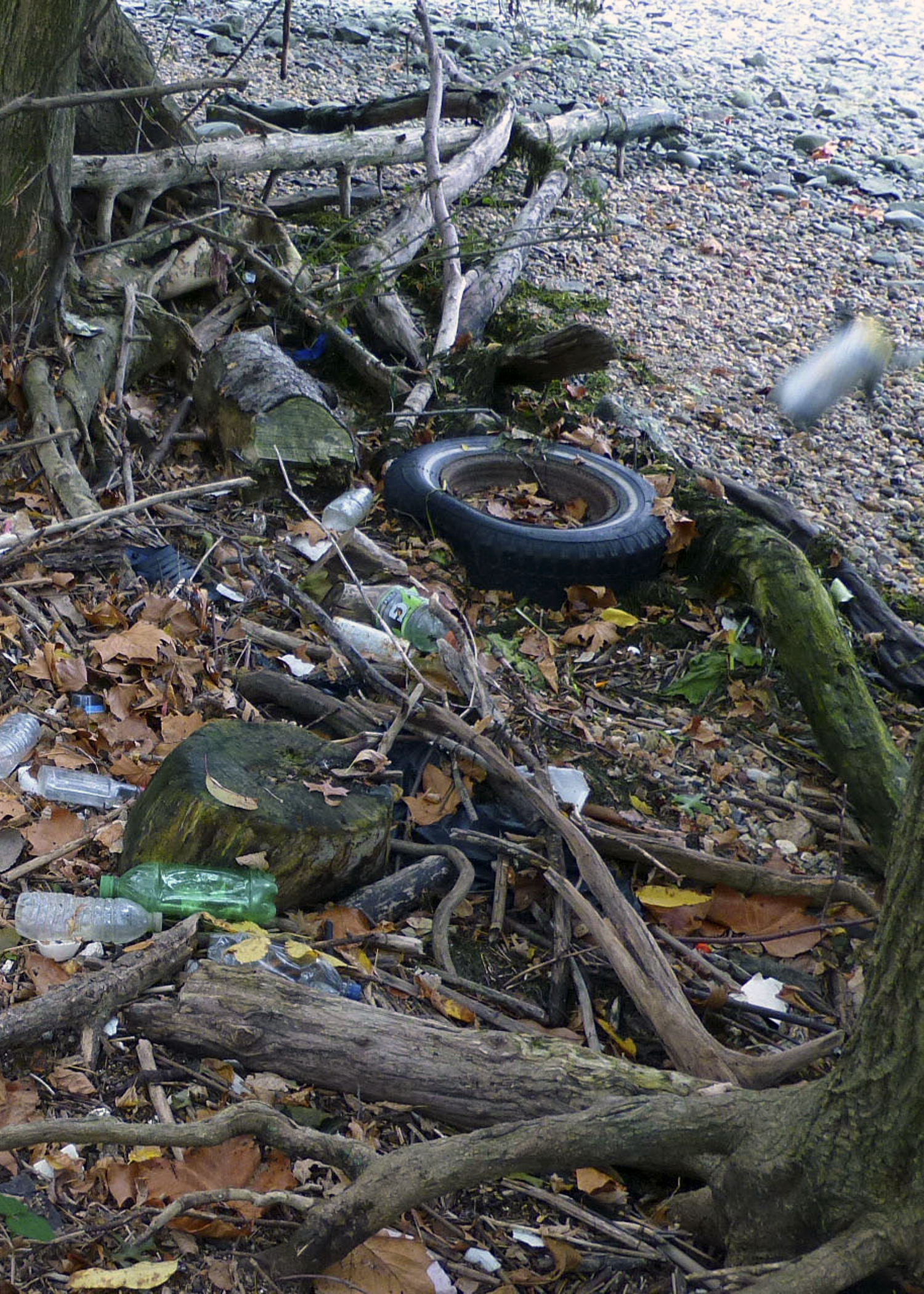 Tire and Trash on the River