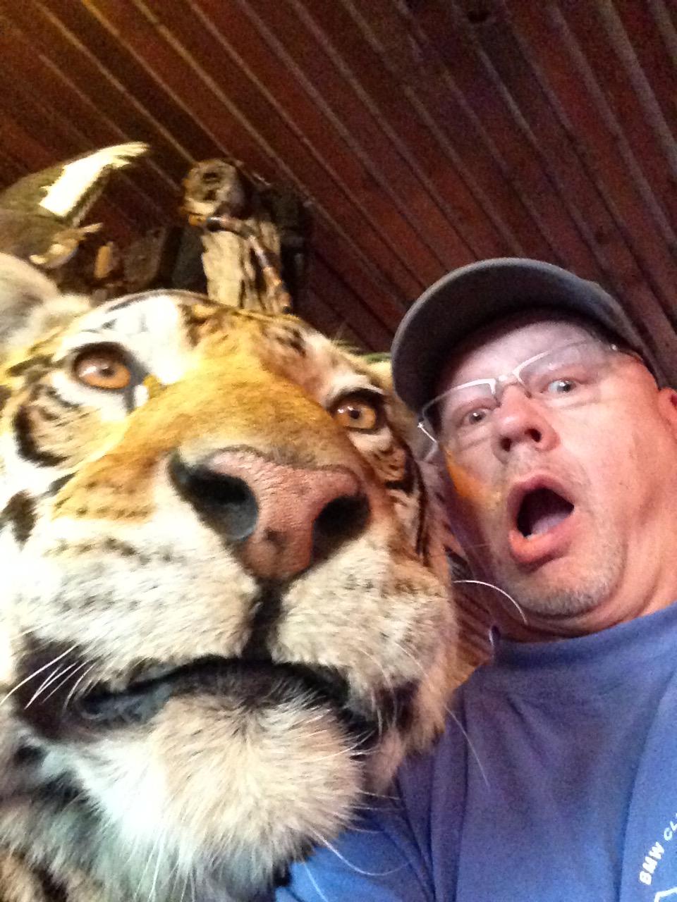 Tiger & Buck