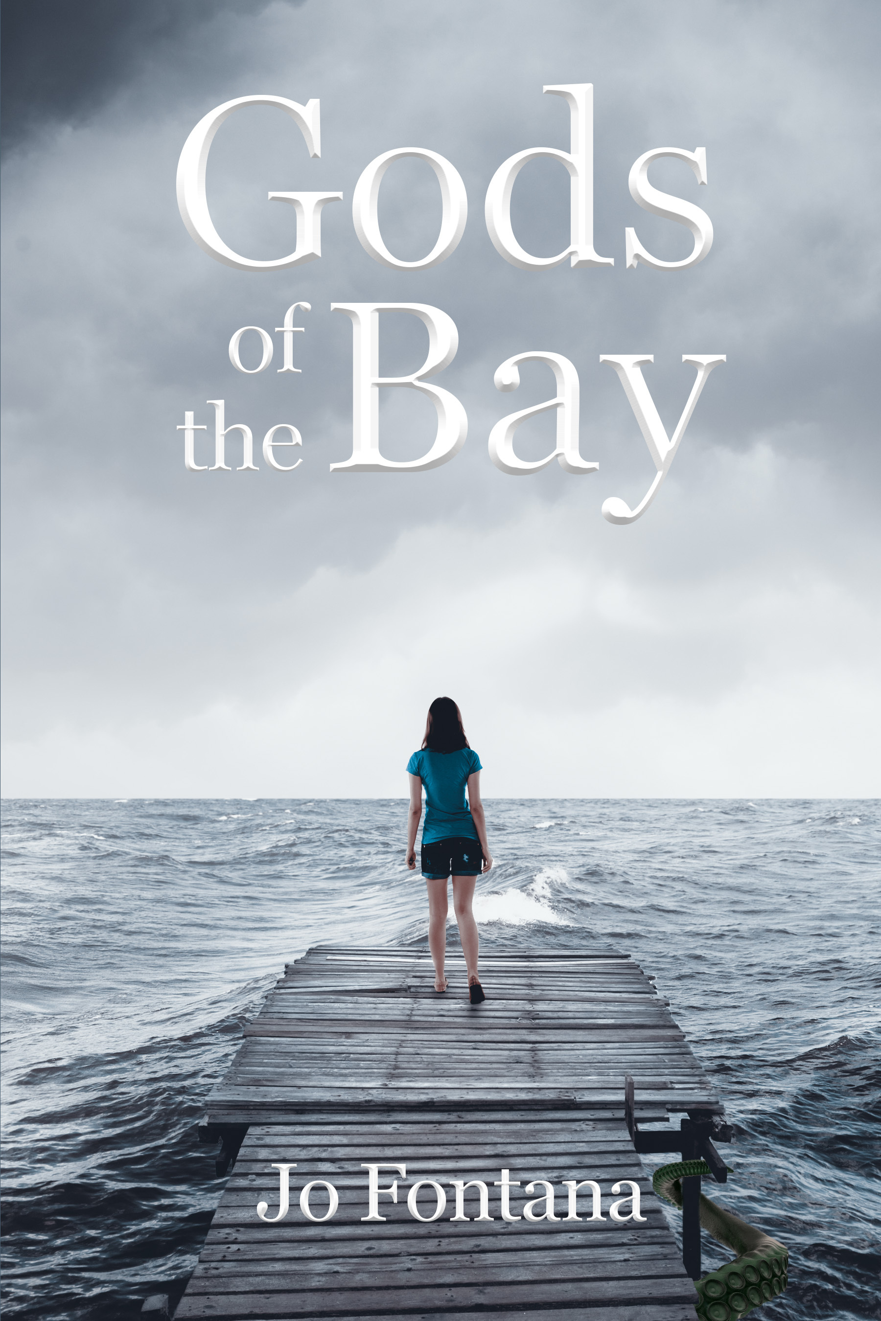 Gods of the bay cover