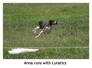 Anna Lure Coursing