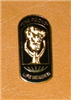 Lapel Pins (Life Member) - click to view details