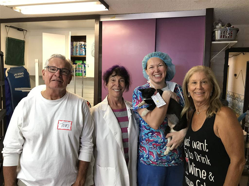 Action Volunteers worked the spay/neuter clinic at Grand Animal Hospital on July 8, 2018