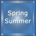 Spring and Summer Activities