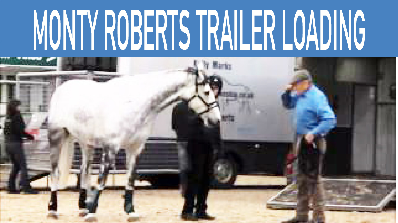 Problem horse trailer loading with Monty Roberts