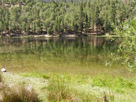 Jenks Lake, above Redding in the San Bernardino Mountains, offers fishing for Rainbow Trout and Largemouth Bass in a cool mountain setting.