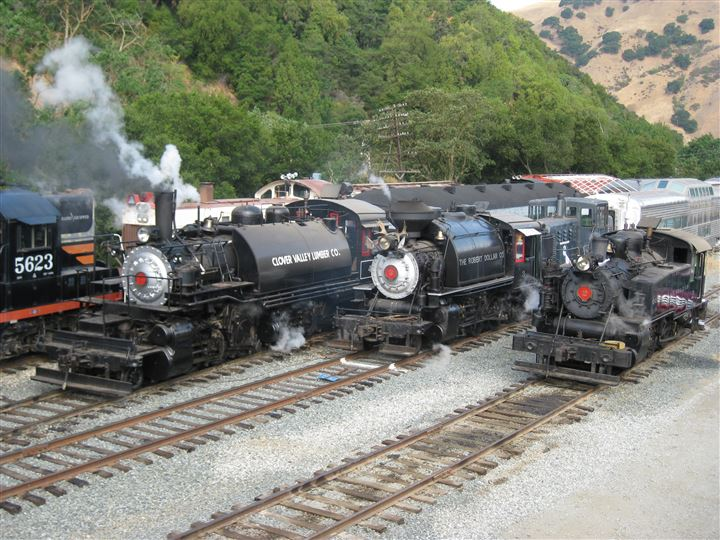 Steam engines operating on the Niles Canyon Railway