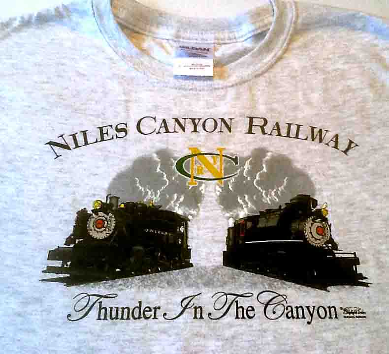 Shirt Y, Thunder in the Canyon, Ash Gray, Medium