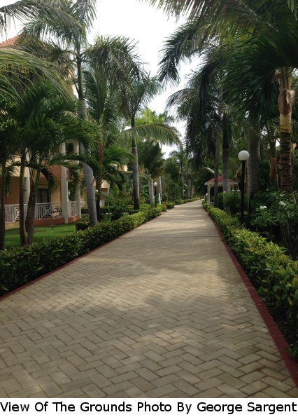Caribbean-A View Of The Grounds 2