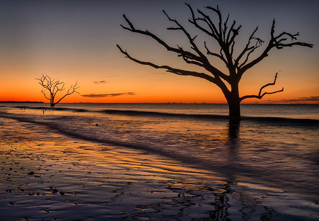 Dawn at Botany Bay