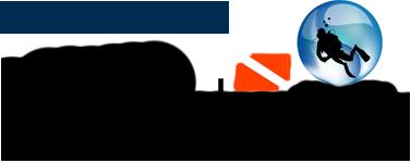 UMSAT Logo Transparent