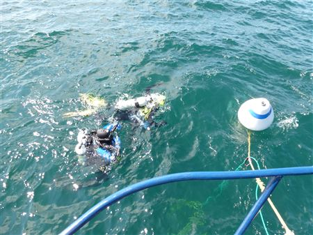 Preparing to remove Mooring Buoy After Dive