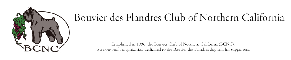 Bouvier des Flandres Club of Northern California