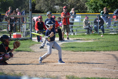 http://whitnallyouthbaseball.com/Page.asp?n=78216&org=WHITNALLYOUTHBASEBALL