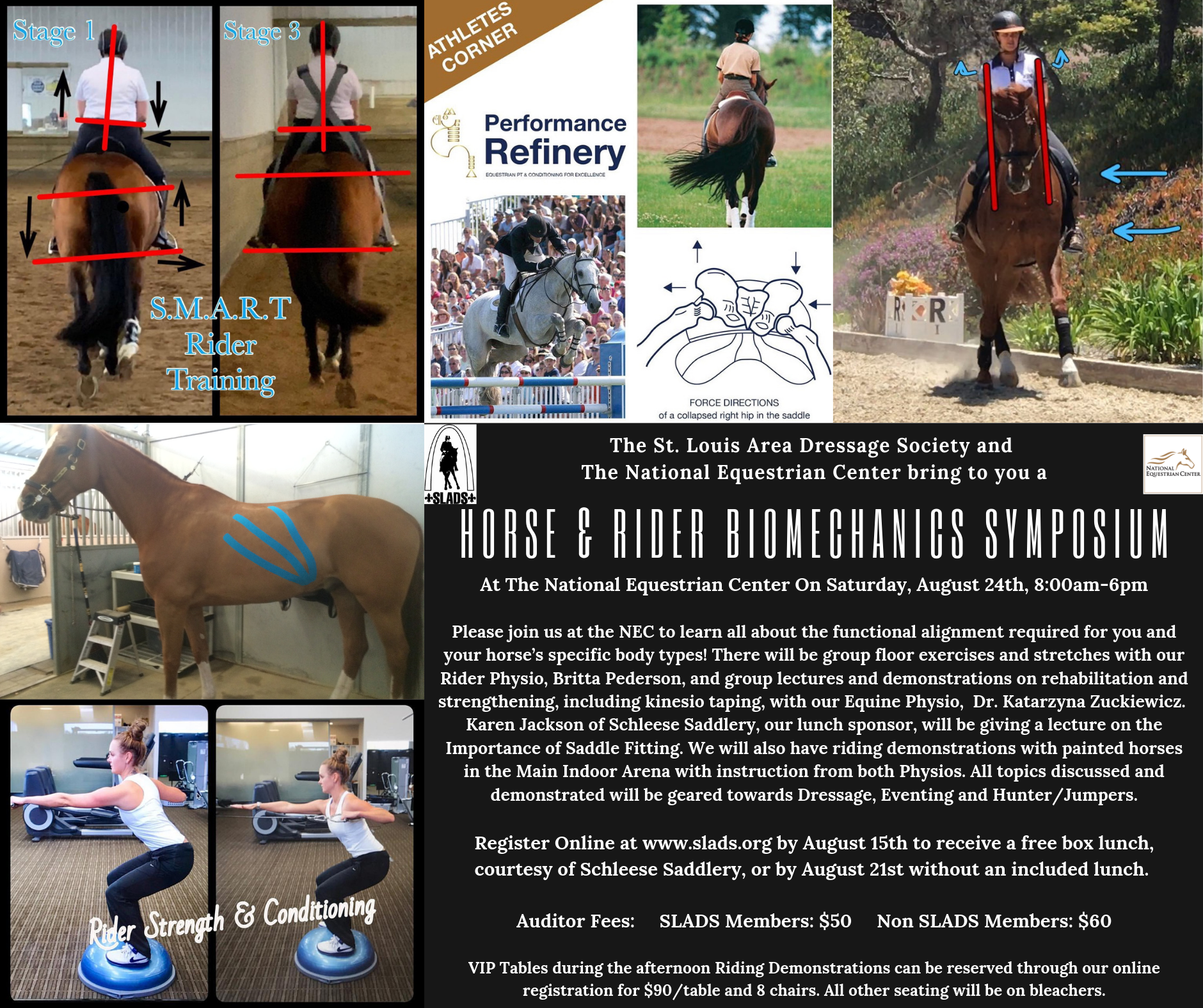Home - St  Louis Area Dressage Society