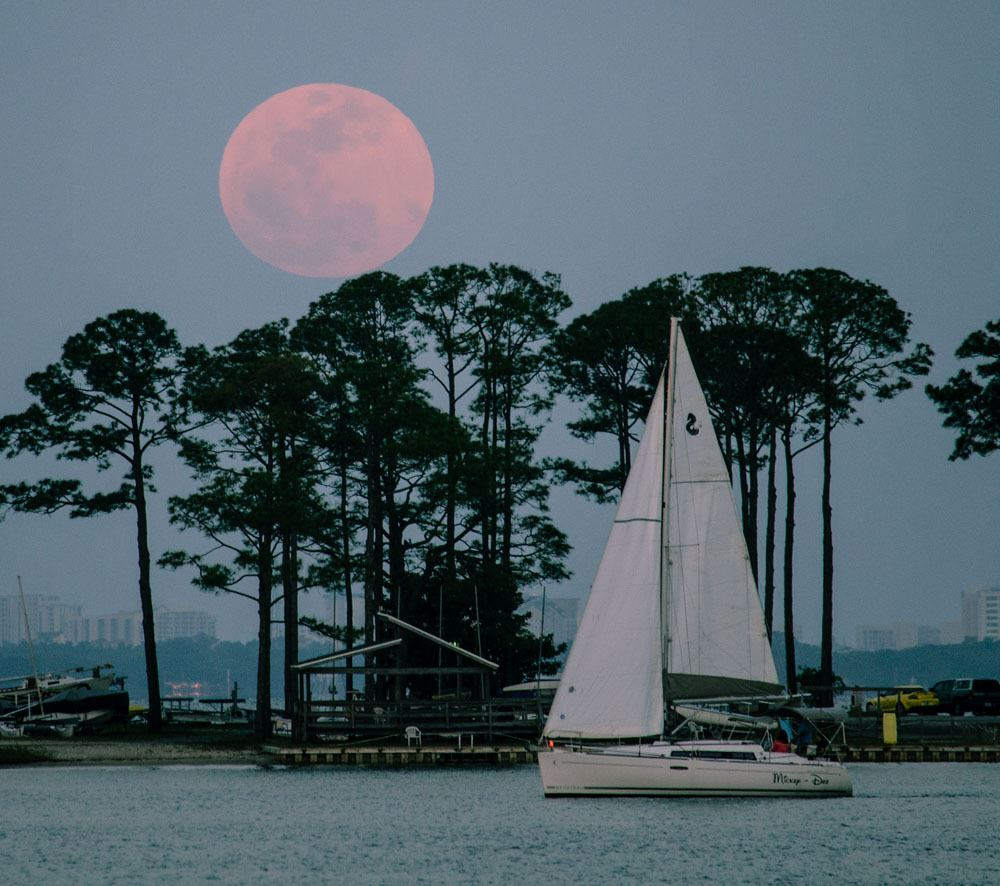 Sailboat with trees and super moon in backdrop