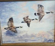 MORNING FLIGHT - click to view details