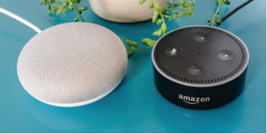 Google Mini and Amazon Dot