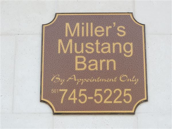 Trip to Millers Mustang Barn March 2015